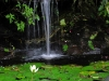 Hotel Bougainvillea Waterfall